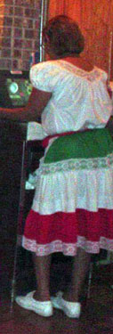 Mexican Flag Skirt