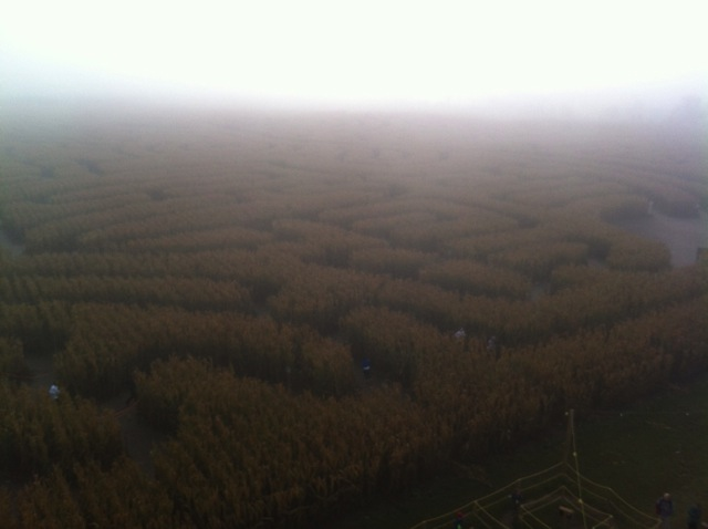 World's Largest Corn Maze in the fog