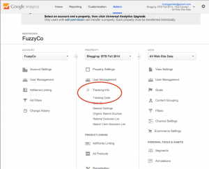 Installing Google Analytics - Step 2